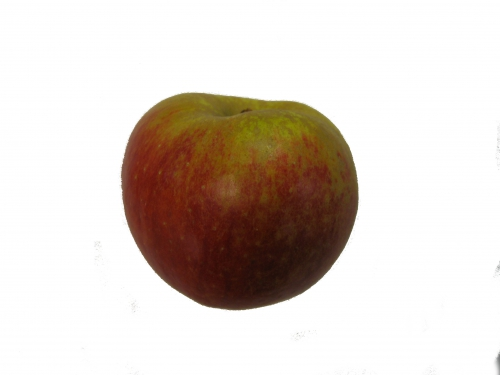 Boskop Apfel